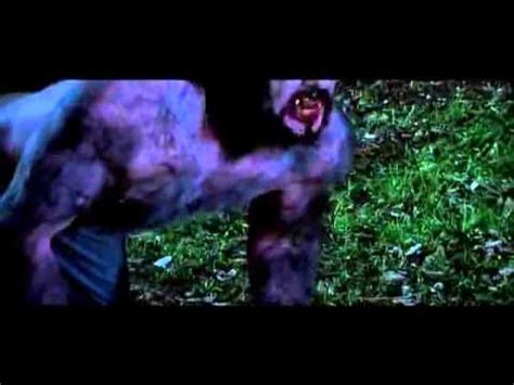 Werewolf Transformation Dense Fear Bloodline Youtube