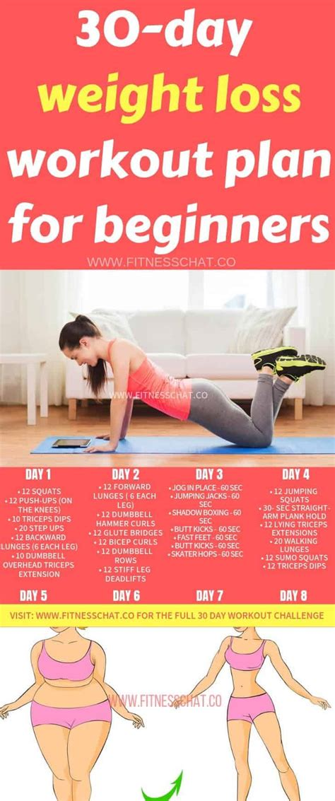 workout beginners weight loss exercise plan routines fat