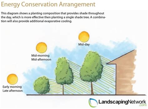 landscaping network energy efficient landscaping landscaping network