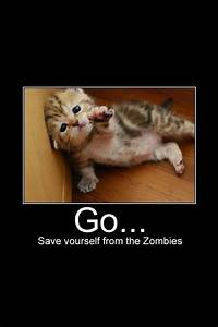 Just go and save yourself don't worry about me! | Cute ...
