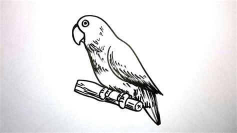 menggambar burung lovebird youtube