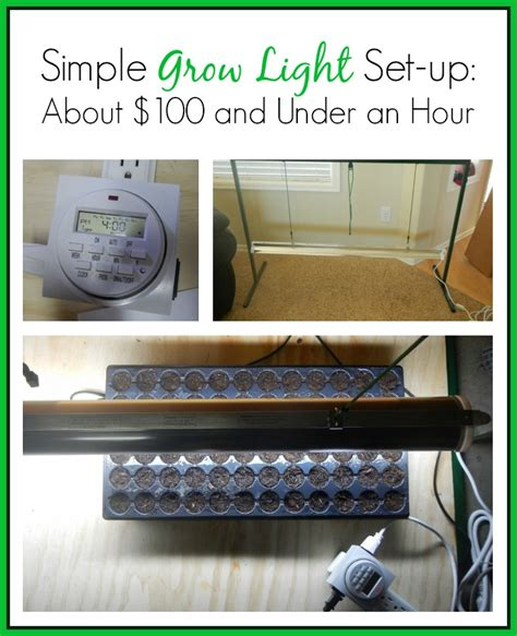 grow light setup simple grow light set up for about 100 and less than an