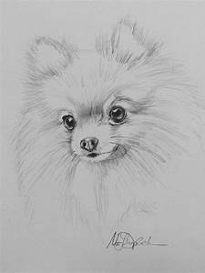 Pomeranian Sketch 15 Free Online Puzzle Games On