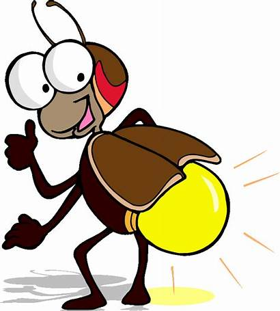 Bug Cliparts Clip Insect Clipart Firefly Web
