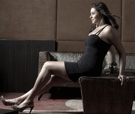 Namitha Latest Hd Wallpapers Namitha Hot Photo Shoot Wallpapers New Movie Posters