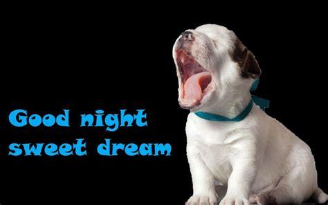 funny good night images  good night funny good