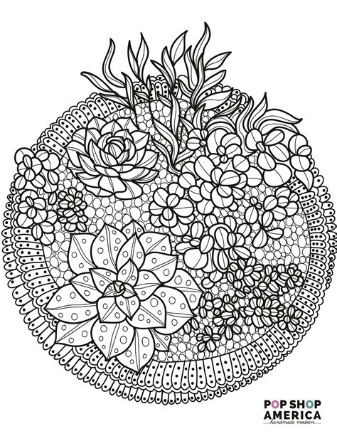 coloring book adults free coloring book pages with succulent terrariums