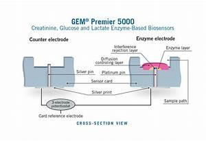 Gem Premier 5000 User And Reference Manual