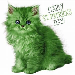Saint Pat's Cat | Kittens Whiskers
