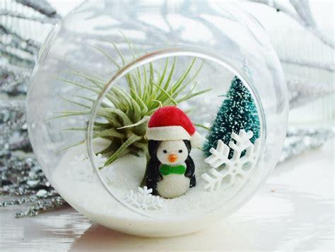 tillandsien im glas weihnachtsdeko im glas selber machen 17 ideen