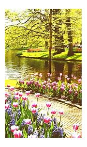 Beautiful Garden Wallpaper For Phone : Garden Wallpapers ...