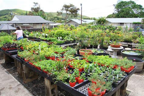 garden of zalman silber a home and garden by zalman