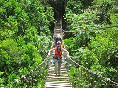 puerto rico canopy  toroverde ecological adventure park
