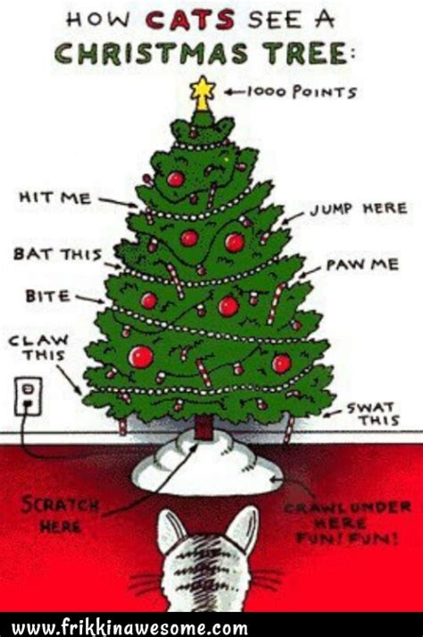 cat first seen christmas tree how cats see a tree frikkin awesome