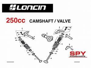 250cc Loncin Engine Diagrams Spy Racing Engine Parts