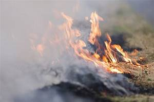 Grass fire burns 100 acres   KNEB