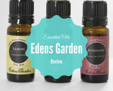 edens garden essential oils reviews what are the best essential companies easy tips to