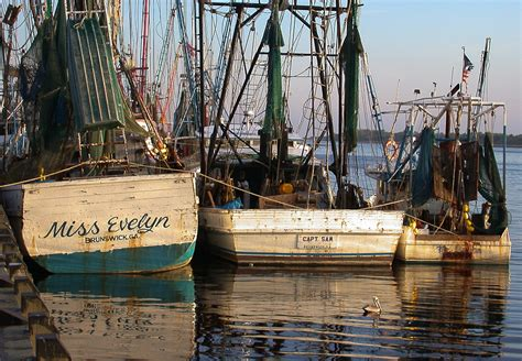 Shrimp Boat Forrest by Shrimp Boats And Their Names Mayhew S