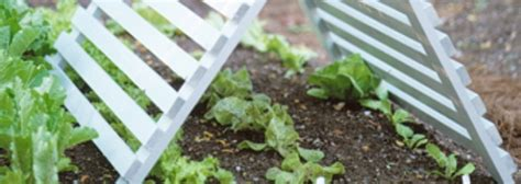 50 Gardening Tricks, And Tips For 2015 Grabco