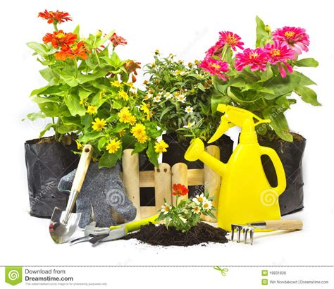 home gardening royalty free stock photos image 18831828