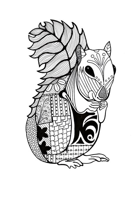 Intricate Squirrel Adult Coloring Page FaveCrafts com