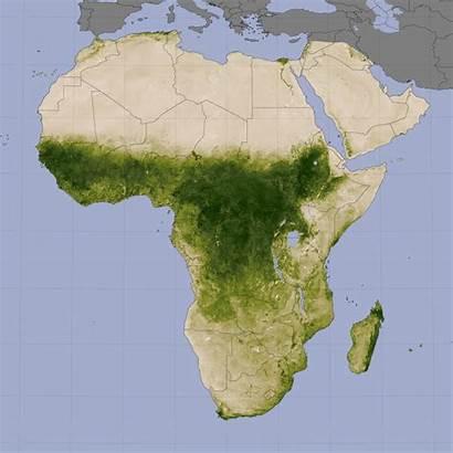 Rainforest Vegetation Africa Map Sahel Region Deforestation