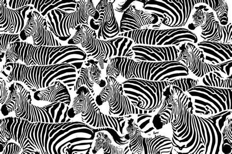 Animal Print Wallpaper Black And White - black and white 3d zebra print wallpaper pattern trendy