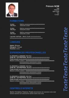 Comment écrire Un Cv En Franàçais by Exemple De Cv 224 Remplir Gratuit Au Format Word Cv Word