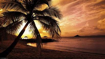 Scenes Beach Tropical Wallpapers Paradise