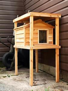 Katzenhaus Selber Bauen : casa feroz do gato foto de stock imagem de pinho madeira ~ A.2002-acura-tl-radio.info Haus und Dekorationen