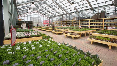 Balkonblumen Viel Sonne by Balkonpflanzen Viel Sonne Balkonpflanzen F R Die Sonne So