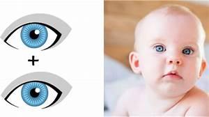 Elterngeld Berechnen 2018 : augenfarbe beim baby vorhersagen kann man sie berechnen ~ Themetempest.com Abrechnung