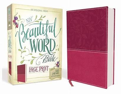 Bible Word Pink Niv Illustrated Verses Zondervan