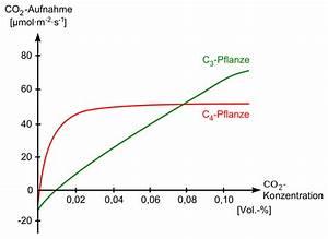 Konzentration Berechnen Chemie : datei photosynthese co2 chemie schule ~ Themetempest.com Abrechnung