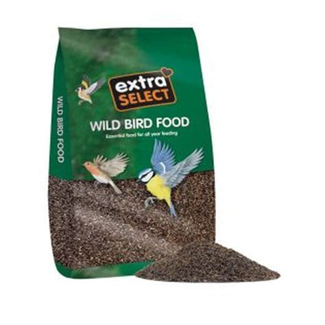 buy bird food accessories online at qd stores
