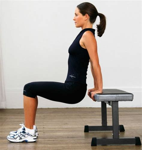 Bench Dips Workout by The Of Dips What Muscles Do Dips Work