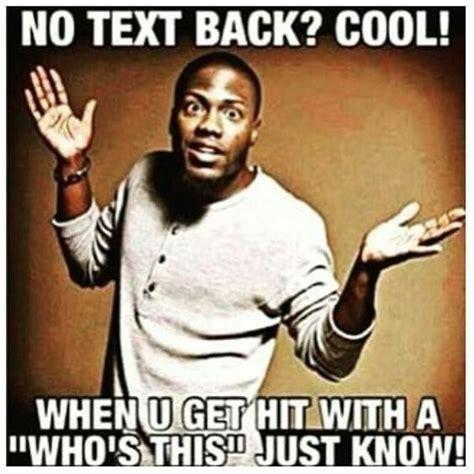 Kevin Hart Texting Meme - 8 best kevin hart images on pinterest kevin hart meme kevin o leary and funny memes