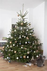 Weihnachtsbaum Schmücken Anleitung : schritt f r schritt anleitung zum perfekten schm cken des ~ Watch28wear.com Haus und Dekorationen