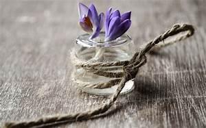 Was Sind Frühlingsblumen : gestalten sie wundersch ne fr hlingsdeko mit fr hlingsblumen freshouse ~ Whattoseeinmadrid.com Haus und Dekorationen