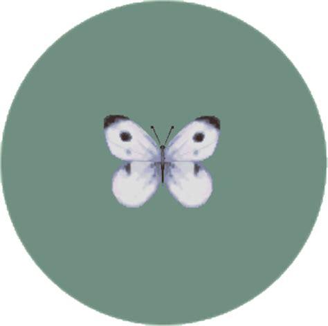 bugs city folk animal crossing wiki fandom