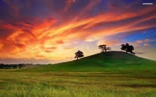 Sunset On a Grass Hill