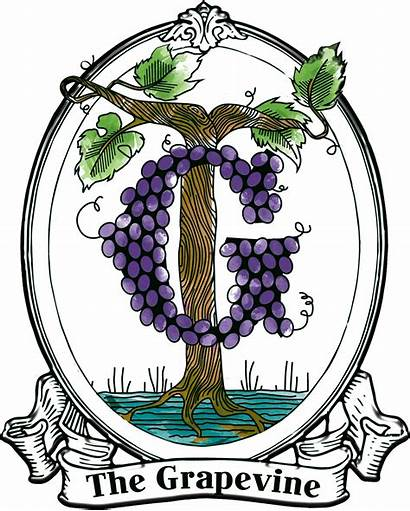 Clipart Scroll Grapevine Transparent Cartoon Webstockreview Jing