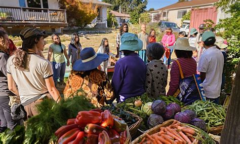 cuisine commune a radical vision for food everyone growing it for each other