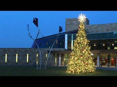 Trees  Dekralite Commercial Outdoor Christmas Decorat