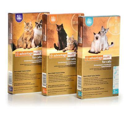 advantage multi cats advantage multi for cats flea and heartworm petcarerx