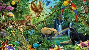 animal kingdom dwellers of the jungle desktop backgrounds With good couleur peinture mur 15 paysage savane decoration pour enfant papier peint