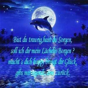 Schöne Delfin Bilder :  ~ Frokenaadalensverden.com Haus und Dekorationen