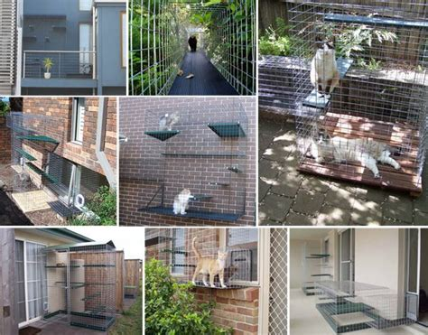 catio ideas lots and lots of kitty catio ideas for the kittehs pinterest sun inspiration and window