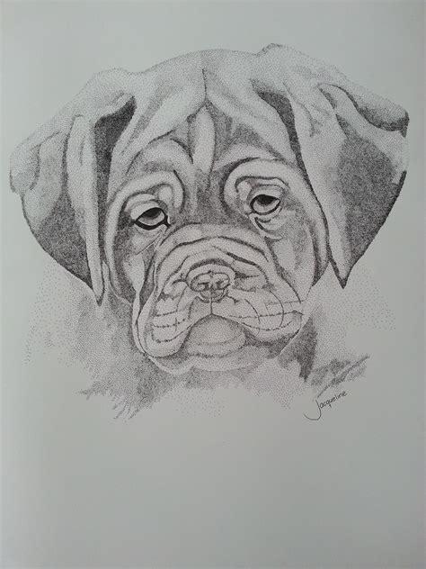 point bordeaux dog  drawing  tekening