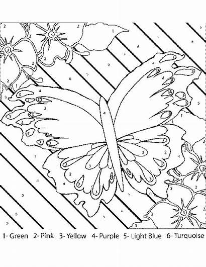 Number Easter Coloring Adults Pages Numbers Printable